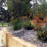 Irrigation Installation and Maintenance - COBEY Landscaping